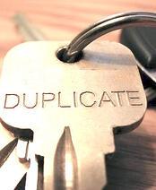 Duplicate content identification