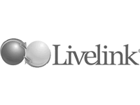 connector to Livelink